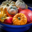 Pumpkins in the bowl — Stock Photo