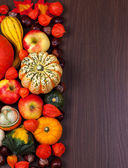 Thanksgiving border — Stock Photo
