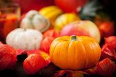 ευχές για τη γιορτή των ευχαριστιών — Φωτογραφία Αρχείου