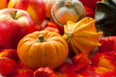 Pumpkins for Halloween — Stock Photo