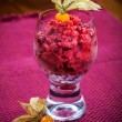 Cranberry sorbet for Christmas — Stock Photo