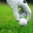 Golf — Stock Photo #2229013