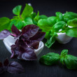 Stock Photo: Variation of basil