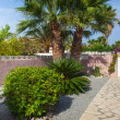 Mediterranean stone garden — Stock Photo