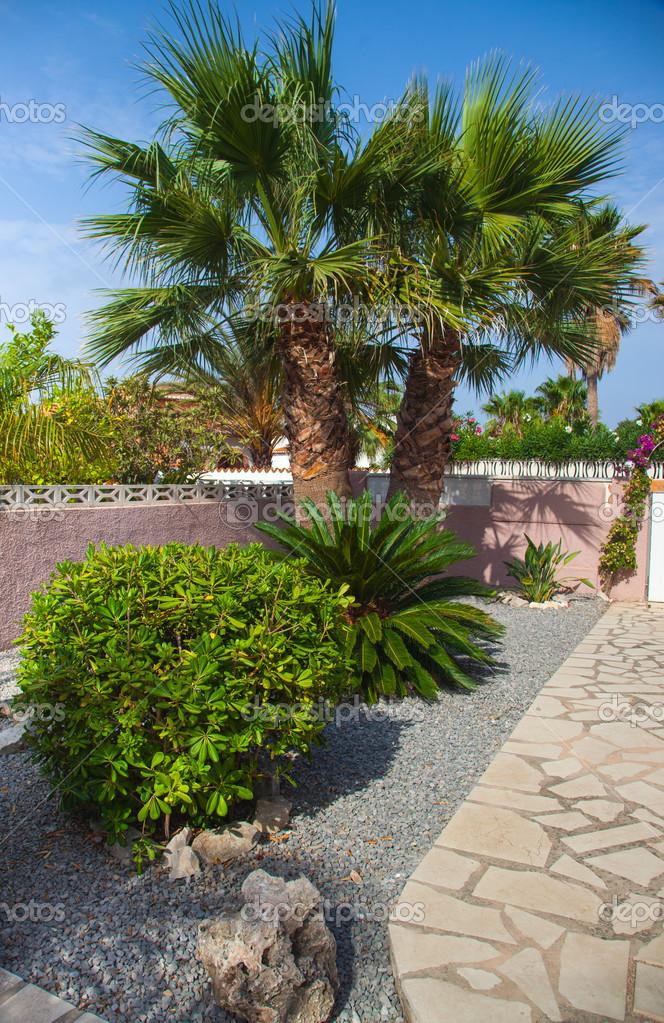 mediterrane steingarten – reimplica | juliedeane, Gartenarbeit ideen