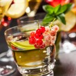 Party cocktails and longdrinks for summer — Stock Photo #48262691