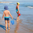 Kids looking for sea shells — Stock Photo #50245609