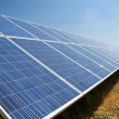 Photovoltaic farm — Stock Photo