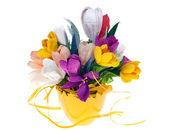Decoration flowers — Stock Photo