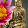 Buddha — Stock Photo #13166788