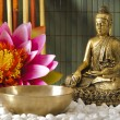 Buddha — Stock Photo #13400825