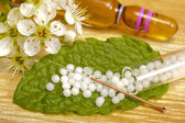 Homeopathy — Stock Photo
