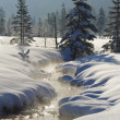 Creek in snow — Stock Photo