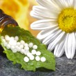 Stock Photo: Homeopathic herbal pills