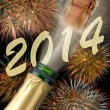 New year 2014 — Stock Photo #24708879