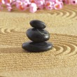 Japanese zen garden — Stock Photo #25184983