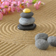 Japanese zen garden  — Photo