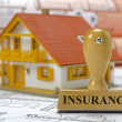 Stock Photo: Insurance for residential house