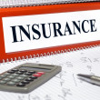 Stock Photo: Folder marked with insurance