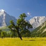 Panorama landscape in Bavaria — Stock Photo #46355115