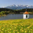 Wide panorama landscape in Bavaria — Stock Photo #48474651