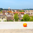 Rome - cityscape — Stock Photo
