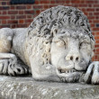 Lion sculpture in Krakow, Poland — Stock Photo