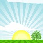 Sunburst vector — Stock Vector
