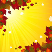 Autumn background with colouful leaves on a starburst background — Stock Vector