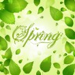 Spring leaves and decorative text — Stock Vector