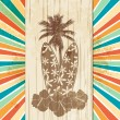 Tropical surfboard sign on star burst - Image vectorielle