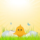 Easter chick with broken egg — Vector de stock
