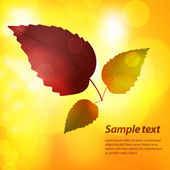 Autumn leaf background with sample text — Stock Vector