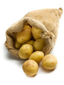 Potatoes in burlap sack — Stockfoto