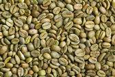 Chicchi di caffè verde — Foto Stock