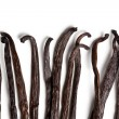 Vanilla pods - Zdjcie stockowe