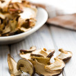 Dried mushrooms — Stock Photo #21572893