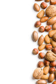 Border of various nuts on white background — Stock Photo
