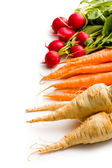Root vegetables — Stock Photo