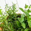 Stock Photo: Various herbs