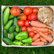 Fresh vegetable in wooden box — Stock Photo