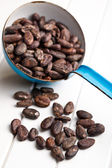 Cocoa beans in scoop — Stock Photo