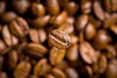 Kahve çekirdekleri zemin üzerine kahve çekirdeği — Stok fotoğraf