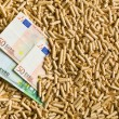 Stock Photo: Pellets with euro bills