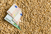 Pellets with euro bills — Stock Photo