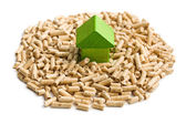 Concept of ecological and economic heating. Wooden pellets. — Stock Photo