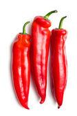 červené papriky na bílém pozadí — Stock fotografie