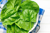 Green spinach leaves in colander — Stock Photo