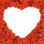 Heart of gerberas flowers — Stock Photo #16487397