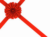 Flower and ribbon. — Stock Photo